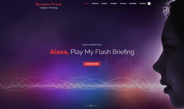 BV Blog Cover Alexa 00