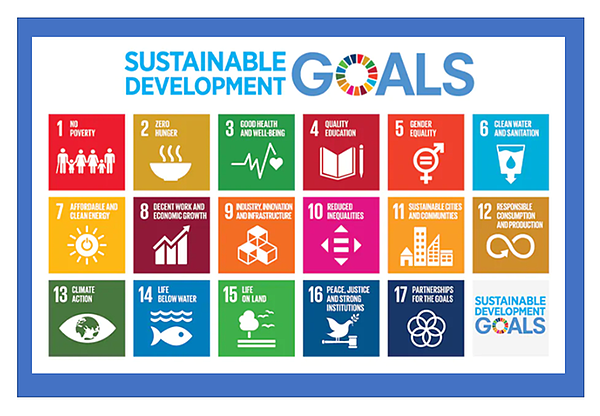 The 17 United Nations Sustainable Development Goals (SDGs)